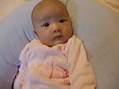 1020到1120 Dora  第二個月的成長點滴:1112 Dora 水汪汪眼睛.JPG