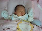 2010.10.01~10月14日 Dora 24天前點滴:10月09日 Dora睡姿超多.jpg