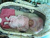1120到1220 Dora第三個月生活照:1128 悠閒躺搖籃 全身.jpg