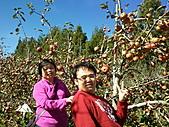 2010年10月25日 大禹嶺+翠峰:梨山福壽山農場 蘋果樹 老媽與我.jpg