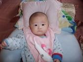2011年Dora的人生第一個春節:0126Dora 瞪大眼睛.JPG