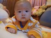 2011年Dora的人生第一個春節:0127Dora 耍酷.JPG