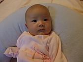 1020到1120 Dora  第二個月的成長點滴:1112 Dora 正視鏡頭.JPG