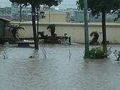 2009年8月9日   88水災 早上 到中午 水退潮中:DSC06674.JPG