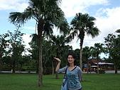 2008年國慶日  花蓮行 第一天 兆豐農場:DSCF0179.JPG