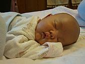 1020到1120 Dora  第二個月的成長點滴:1101 趴睡2.jpg