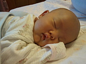 1020到1120 Dora  第二個月的成長點滴:1101 趴睡3.jpg