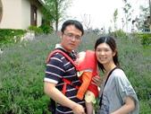 2011年04月22日 台中彩虹眷村+心之芳庭:台中心之芳庭 Dora 3.JPG
