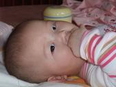 2011年Dora的人生第一個春節:0202Dora 咬雞腿.JPG
