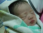 2010年9月20 虎妞妞誕生記:14點 白皙亮麗的妞妞.jpg