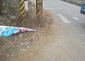 08年2月19日早上車禍:DSC00046.jpg
