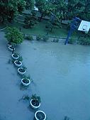 2009年8月8日   88水災 中午到3點:20090808114455.jpg