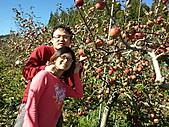 2010年10月25日 大禹嶺+翠峰:梨山福壽山農場 蘋果樹之戀.jpg