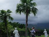 2008年國慶日  花蓮行 第一天 兆豐農場:DSCF0174.JPG