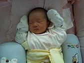 2010.10.01~10月14日 Dora 24天前點滴:10月07日 超可愛的瓊憶(開始不綁手手囉).jpg