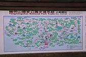 台北之旅:DPP_0060.jpg