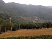 2015 北市山協登山留影:20150111 獅公髻尾山_自行車道步道 219.JPG