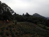 2015 北市山協登山留影:20150111 獅公髻尾山_自行車道步道 184.JPG