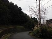 2015 北市山協登山留影:20150111 獅公髻尾山_自行車道步道 197.JPG