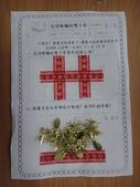 學習單分享區:雙十國慶01.JPG