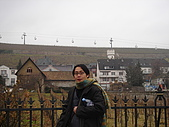 德瑞雙峰雙堡10日遊(2/19-2/20):25-000呂德斯海姆莆萄園.JPG