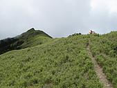 20090725北二段:19_往鈴鳴山.JPG