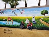 阿俊3D彩繪@相簿:居家圍牆彩繪,牆壁彩繪設計,LINE ID: 559383 TEL:0955-660115