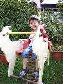 1001105羊世界:91586.JPG