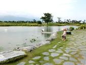2017環島:CIMG5967.JPG