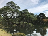 2018日本名古屋石川穗高:兼六園_181017_0007.jpg