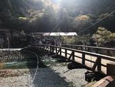 2018日本名古屋石川穗高:上高美地_181020_0014.jpg