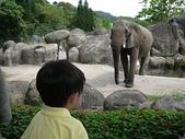1000606木柵動物園:06066.JPG