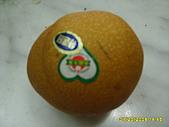 水果家族:S6008111.JPG