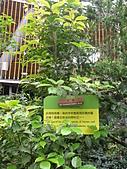 991214台北2010年世界花卉博覽會-花卉植物:P2460817.JPG