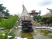 991214台北2010年世界花卉博覽會-花卉植物:P2460781.JPG