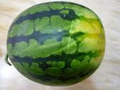 多吃水果-有益健康:1308577959.jpg