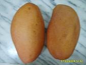 水果家族:S6008071.JPG