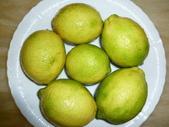 多吃水果-有益健康:1308577946.jpg