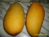 水果家族:S6008075.JPG