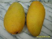 水果家族:S6008078.JPG