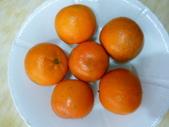 多吃水果-有益健康:1308577948.jpg