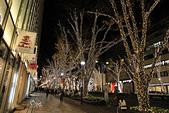 20161201-1206日本東京銀杏+河口湖富士山:IMG_7490.JPG