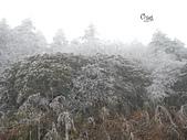 20141116峨嵋山:DSCN0472.JPG