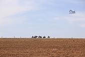 20171005-1009內蒙古:IMG_9616.JPG