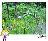 20100731-0803宜蘭四日遊:IMG_0053.JPG