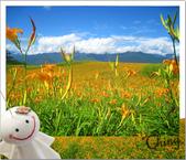 20090913-0915花蓮金針花之行 :IMG_8068.JPG