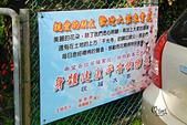 20130309陽明山北投三芝櫻花:DSCN2398.JPG