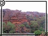 20101025-1027 Uluru tour:IMG_2315_1.jpg
