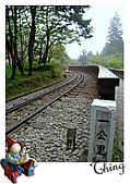 20100328-0329阿里山賞櫻:IMG_6976.JPG