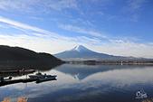 20161201-1206日本東京銀杏+河口湖富士山:IMG_8094.JPG